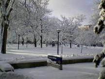 University 1 ds