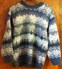 sweater ds2