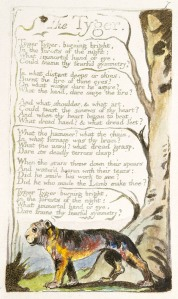 William Blake - who did the illustrations of Job used throughout this series - has echoes of Job 38-41 in his most famous poem (HT SG).