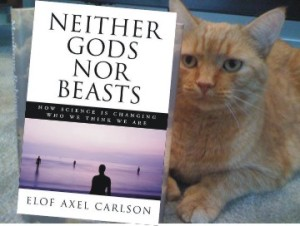 Neither Gods Nor Beasts