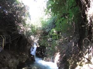 Banias or Hermon Stream 2 ds