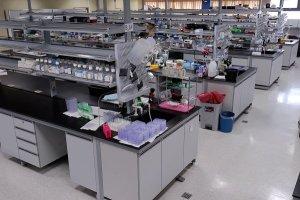 cicbs_laboratory